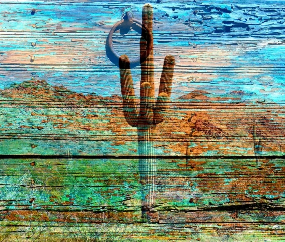 wood grain with cactus